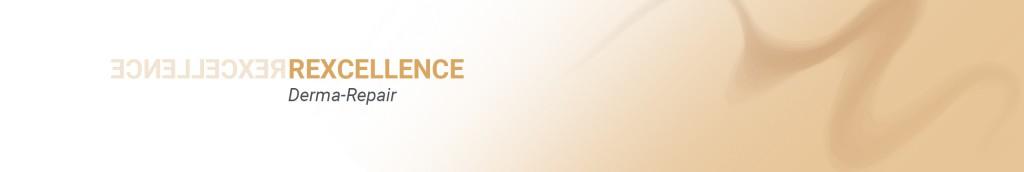 Banner_principal_rexcellence